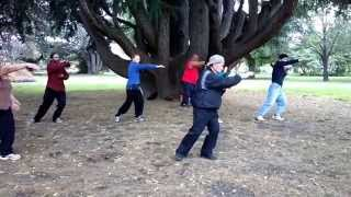 preview picture of video 'Download Download To Shuǐ jing (吐水經) at Cornwall park, Hastings New Zealand  2014'