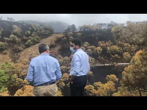 Salado visita las zonas más afectadas por el incendio y anuncia que los técnicos de Medio Ambiente y Carreteras ya valoran los daños