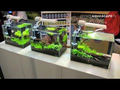 Aquascaping - Aquarium Ideas from Aquatics Live 2011, part 1