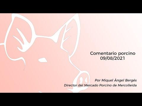 Comentario porcino - 09/08/2021