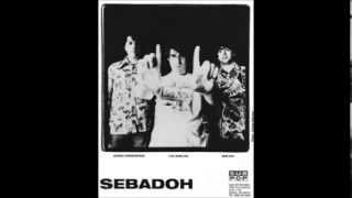 Sebadoh - Crest (Stereolab cover) - BBC Peel Session 1994