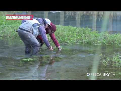 La pesca su uno zherlitsa nellinverno di video