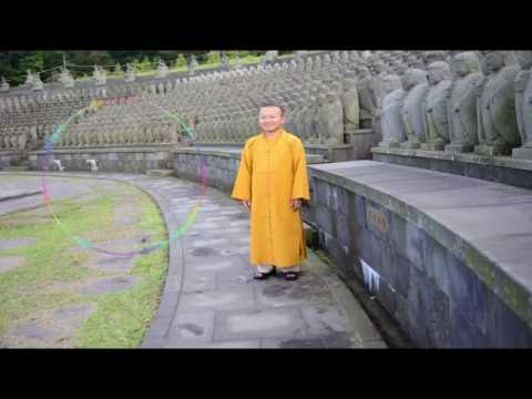 Vấn đáp: Vesak liên hiệp quốc, đạo Phật nguyên chất (14/06/2014) - Thích Nhật Từ