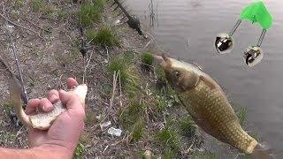 Ловля рыбы на удочку с применением кормушки