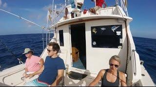 Aruba 2016 - 'Trip Around The Sun'