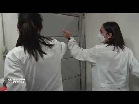 Tratarea tulpinilor de viermi