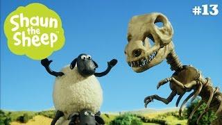 Hóa thạch - Những Chú Cừu Thông Minh  [Phần 3]