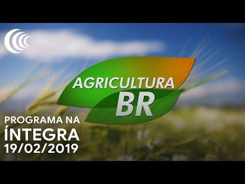 Programa Agricultura BR - 19/02/2019