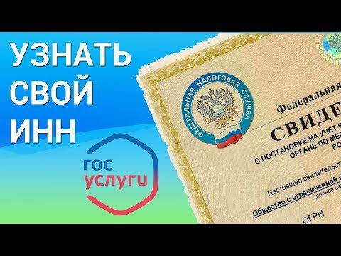 Как узнать свой ИНН? Смотрим ИНН онлайн на сайте Федеральной налоговой службы nalog.ru