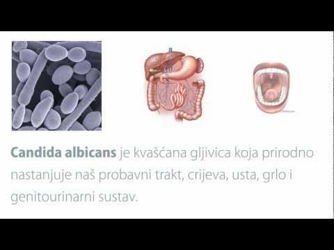 Die Behandlungskosten gribka des Nagels in sankt-peterburge