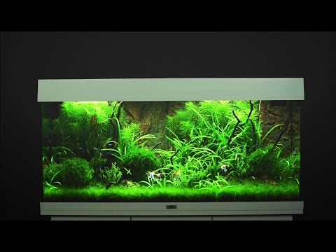 aquarium juwel rio 180 led noir. Black Bedroom Furniture Sets. Home Design Ideas