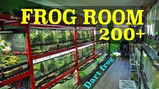 Insane Frog Room Tour! 200+ FROGS!