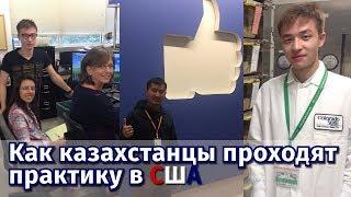 Образование в США. Как казахстанцы проходят практику за рубежом