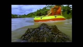 Killer Crocodile 2 (1990) - Episches Ende