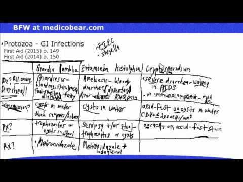 Enterobiosis tver