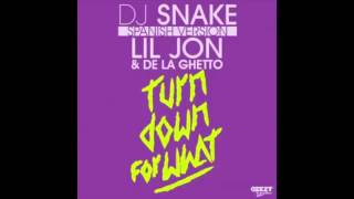 Turn Down For What (Spanish Version) DJ Snake Ft Lil Jon ,De La Ghetto ✓