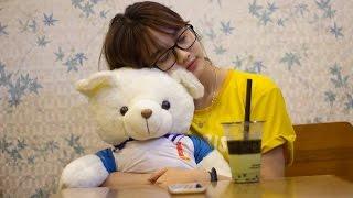 Quảng Cáo: Gấu sinh viên - Gấu các trường Đại học.