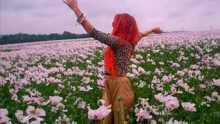 Neon Hitch - Pink Fields [Official Video]