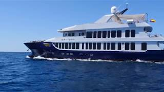 Cruise through the Galapagos in luxury on the Origin & Theory Yachts