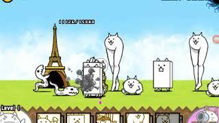 Batle cats 6 котята в коробке