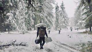 ГОРНЫЙ АЛТАЙ: ореховая лихорадка   НЕИЗВЕСТНАЯ РОССИЯ