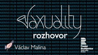 Video Rozhovor Václava Maliny se Saxuality   ČRo České Budějovice