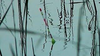 Карась сломал маховую удочку Goture на рыбалке. Ловля КАРАСЯ на Хлеб и Поплавок