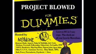 DJ HANDPRINTS - Project Blowed For Dummies - Hosted By Aceyalone