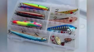 Лицензия на ловить лосося в карелии