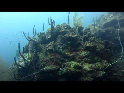 Scuba diving in Saint Vincent and the Grenadines