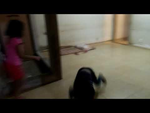 Antônio Carlos brincando de imitar cachorro com a prima Isabella