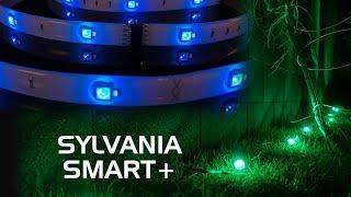 SYLVANIA SMART+ Lighting Review - A19 Color-Changing Bulb, Flex Lightstrip and Gardenspots