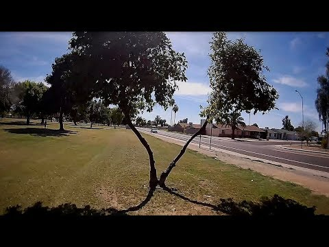 Gofly Scorpion 90HD - FPV Phoenix Cactus Park Warm Afternoon