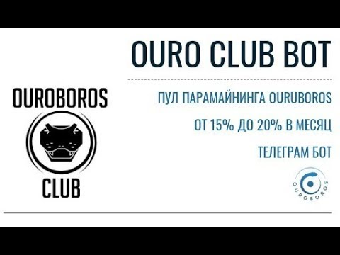 OUROCLUBBOT ОБЗОР БОТА, ИНВЕСТИЦИЯ 1200 МОНЕТ OURO