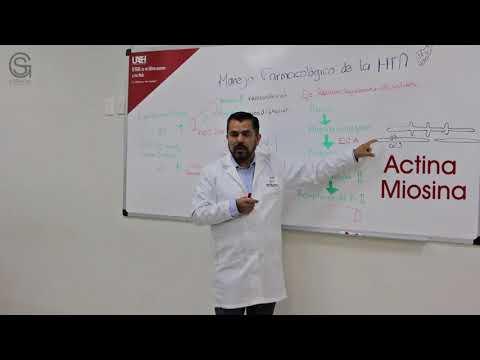 Etapa 2 la hipertensión. estudio de diagnóstico