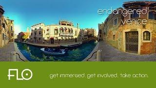 002 - Endangered Venice