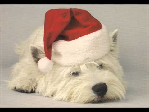 Please Come Home for Christmas (Song) by Sawyer Brown