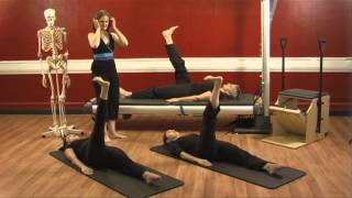 What a Muscle, Ligament, Tendon Are by Upside-Down Pilates