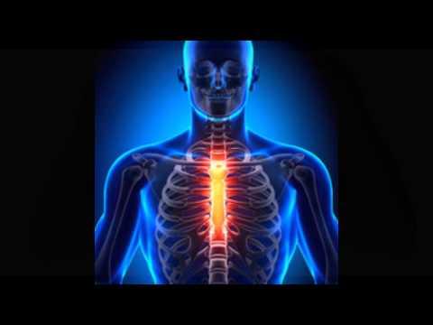 Los tratamientos a base de hierbas para enfermedades de las articulaciones
