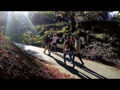 Huawei Y5 II main (back) camera test: Video sample footage / Sunset ᴴᴰ