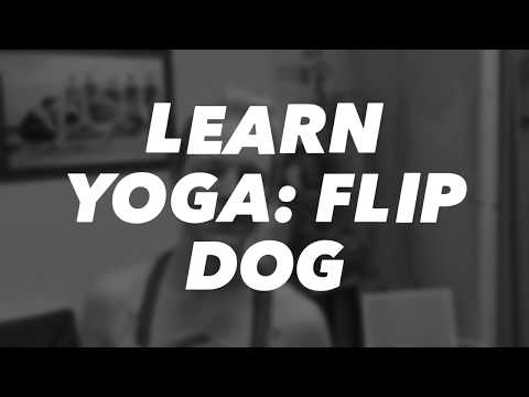Spotted Dog Yoga Learn Yoga: Flip Dog