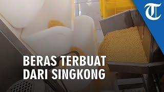 Ini Nih Beras dari Singkong, Cocok untuk Penderita Diabetes