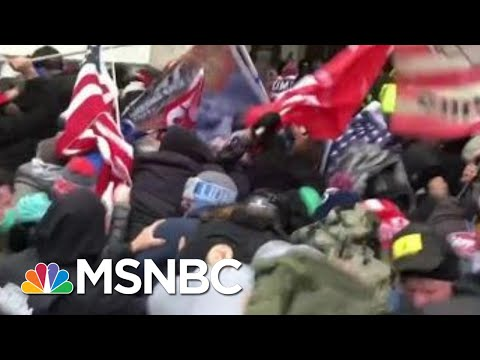 David Remnick: Look At Where Trump Has Brought Us | Morning Joe | MSNBC