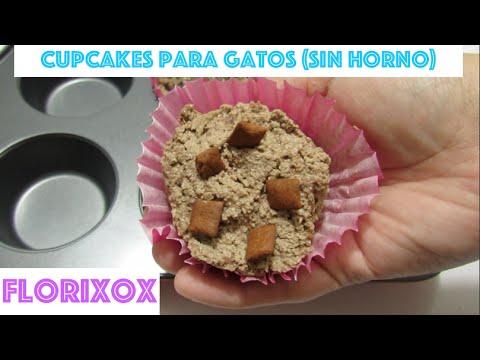 Cupcakes (Panquecitos) Para Gato Fáciles, Sencillos y Sin Horno - SiamCatChannel