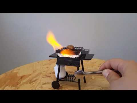 Cooking with a Mini Barbecue Grill