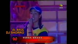 YERBA BRAVA (EN VIVO CANTA SANTIAGO) - PASION DE SABADO 01 - DJ SHORRO