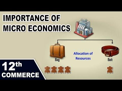 Importance  of Micro Economics | 12th Std | Economics | Commerce | Maharashtra Board | Home Revise