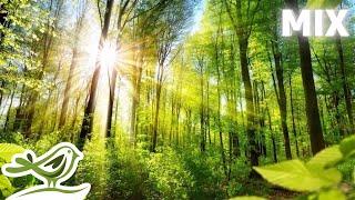 Peder B. Helland - Sunny Mornings (Full Album)