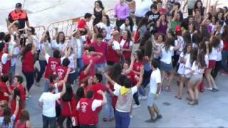 4 de Junio 2011: Acogida de la Cruz en la Plaza de la Catedral y flashmob JMJ