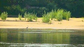 Форумы ловля сазана на ахтубе в августе